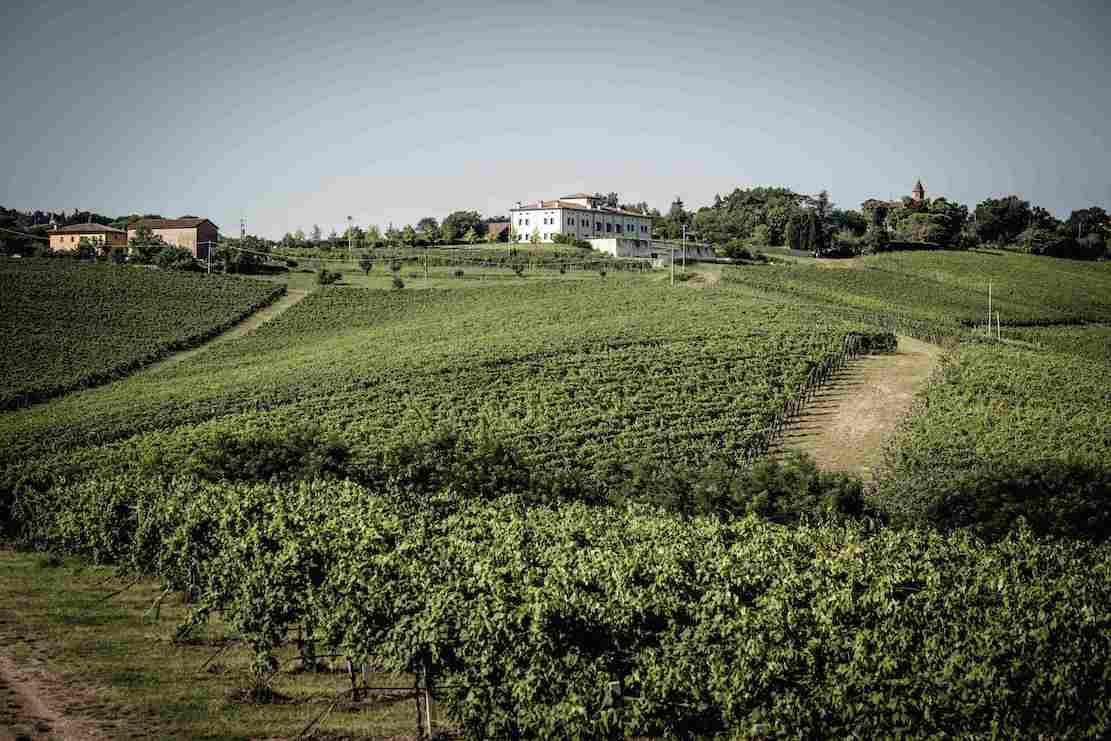 umberto-cesari-seeks-respect-for-the-wines-of-emilia-romagna-–-forbes
